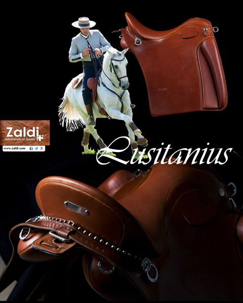 IMPORTED BAROQUE & IBERIAN HANDCRAFTED AND CUSTOM TACK