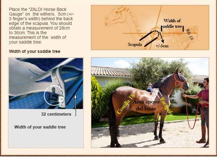 Zaldi Saddle Fit Guide