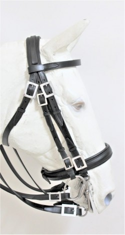 0602 Double FL Mixed bridle
