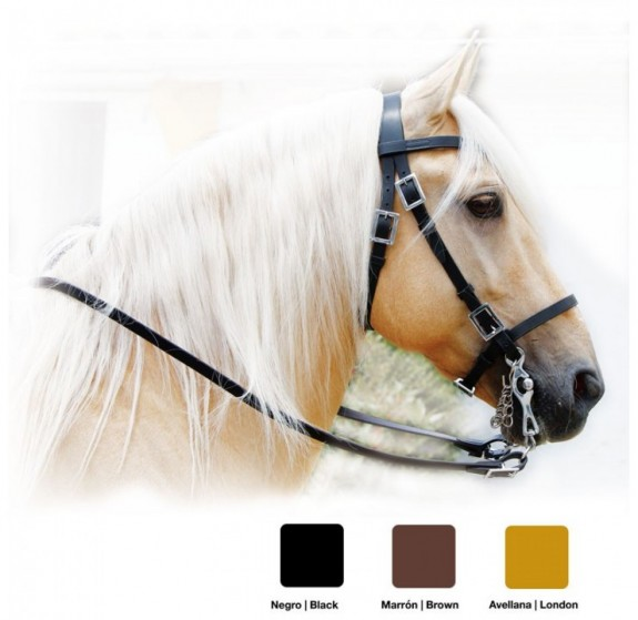 210191620 Portuguese Working Equitation Bridle