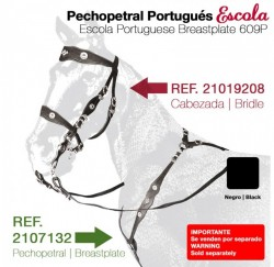 21071320 Escola Portuguese breastplate