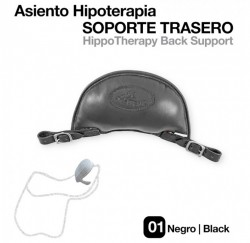 210452 Hypotherapy Back Support