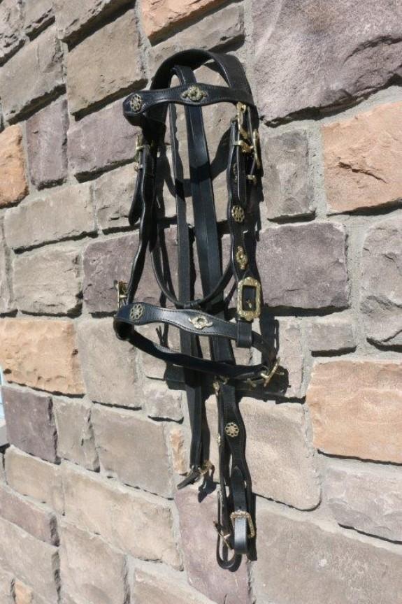 0131250 Marjoman Cortesia Single bridle
