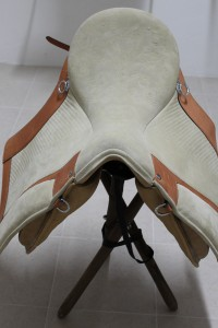 MFonseca-saddle.JPG