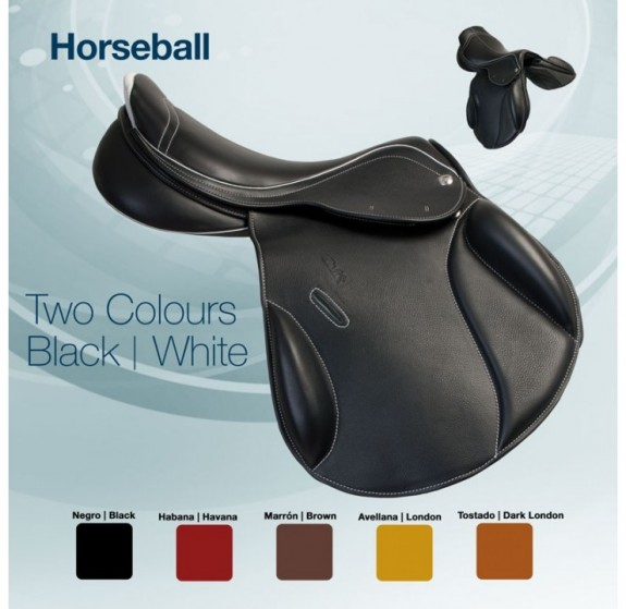 00132 Horseball