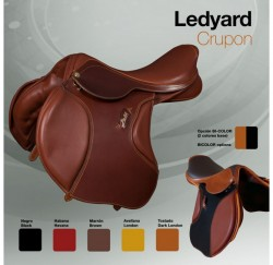 00158 Ledyard