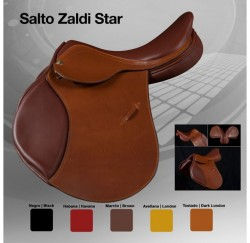 00139 Zaldi Star