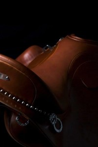 zaldi-00122-lusitanos-seat.jpg